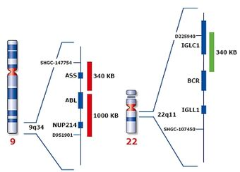 RTEmagicC dfb6c6b417.jpg