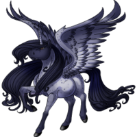 Blue Roan Alicorn