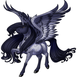 File:Blue Roan Alicorn.png