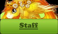 Staff Button Spring
