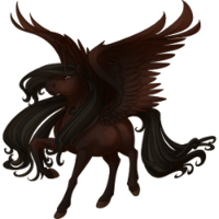Dark Bay Alicorn