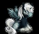 Nightshimmer Alicorn