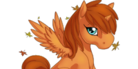 Autumn Afterglow Alicorn