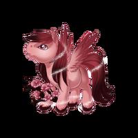 Sakura Spirit Pegasus Baby