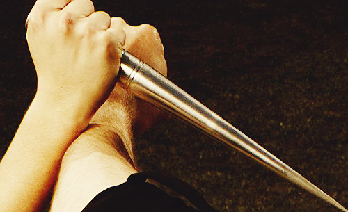 File:Rose's training sliver stake.jpg