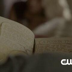 Klaus reading a book