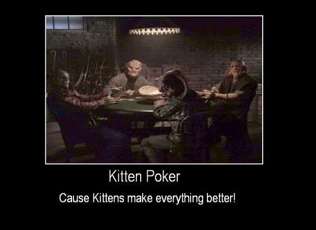 File:KittenPoker.jpg