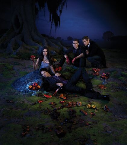 File:Season-3-Poster-the-vampire-diaries-25275004-1024-1166-1-.jpg