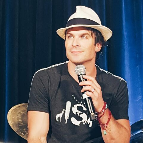 File:2015 WWCC Chicago 06 Ian Somerhalder.jpg