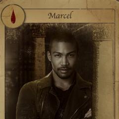 Marcel -
