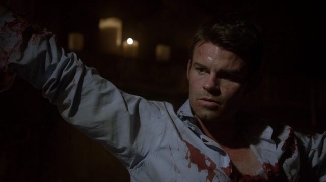 File:Normal TheOriginals204-2242Elijah.jpeg