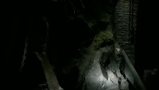 File:Cellar2.jpg