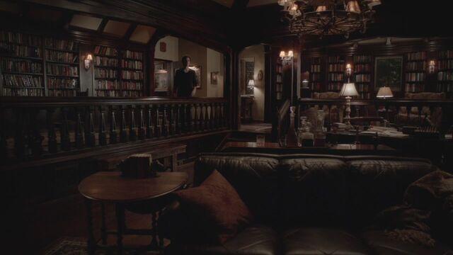 File:The-Vampire-Diaries-3x17-Break-On-Through-HD-Screencaps-damon-salvatore-29966625-1280-720.jpg