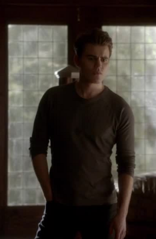 File:4x16 Stefan Salvatore Bring It On.png