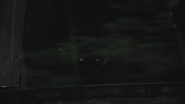 File:Mason Lockwood (werewolf) wolf eyes glowing in back of his car at Stefan Salvatore (vampire) (TVD & TO).jpg