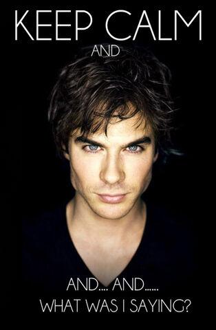 File:Keep-Calm-Damon-the-vampire-diaries-25683143-458-700.jpg