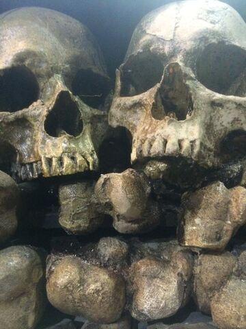 File:The Originals -Skulls.jpg