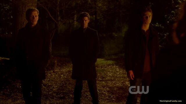 File:153-tvd-3x15-all-my-children-theoriginalfamilycom.jpg
