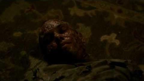 Luka's trying to liberate Elijah. Damon and Katherine kill him