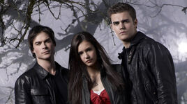 Damon-Elena-Stefan-damon-elena-stefan-8333257-800-448