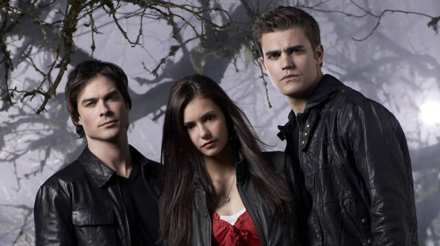 File:Damon-Elena-Stefan-damon-elena-stefan-8333257-800-448.jpg