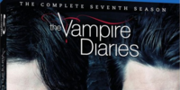 The Vampire Diaries: The Complete Seventh Season (DVD)