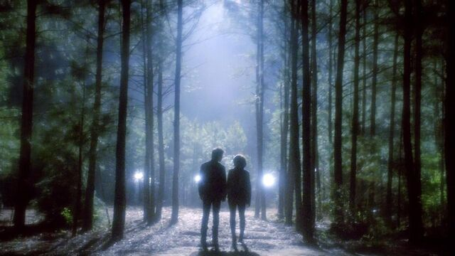 File:The.Vampire.Diaries.S05E22.720p.HDTV.X264-DIMENSION.mkv snapshot 41.47 -2014.05.17 16.12.53-.jpg