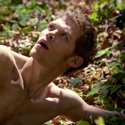 Klaus after being a werewolf for 2 days.