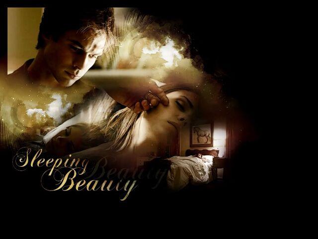 File:Elena-Damon-the-vampire-diaries-tv-.jpg