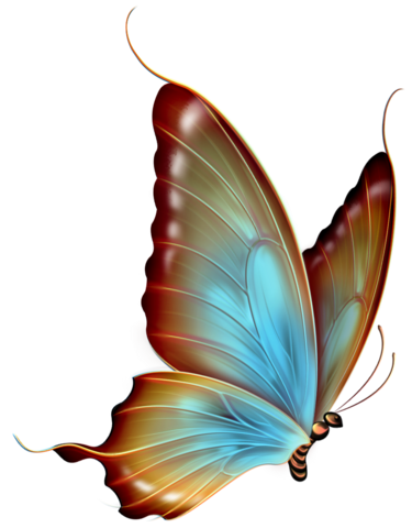 File:Brown and Blue Transparent Butterfly Clipart.png