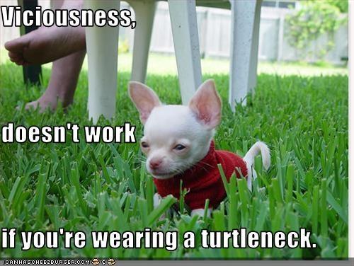 File:Turtlenecknotvicious.jpg