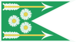 Предполагаемый флаг Дол Блатанна