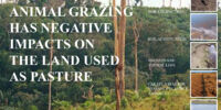 Animal Grazing has negative impacts on the land used as pasture