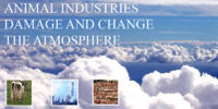 ATMOSPHERE: Animal Industries damage and change the atmosphere of the planet