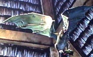 File:Flying Beast.jpg
