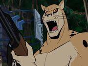 VB Karl Cheetah