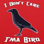 Birdonashirt