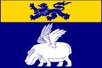 Wildiarde flag