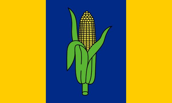File:Proposed NE Flag Bezbojnicul.png