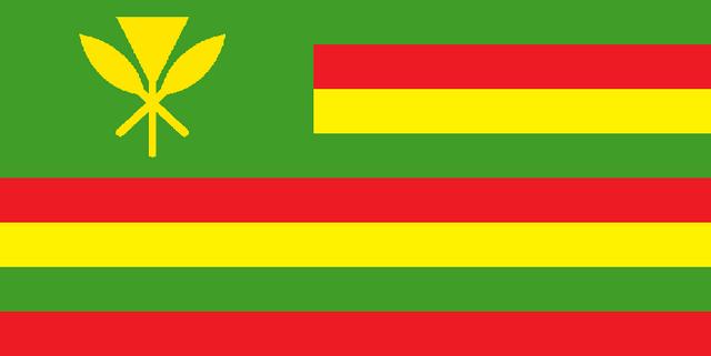 File:HI Flag Proposal Robo-Diglet.png