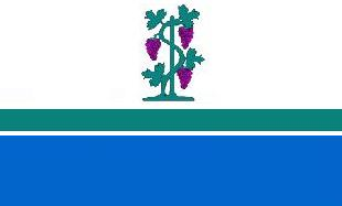 File:CT Flag Proposal VoronX 1.png