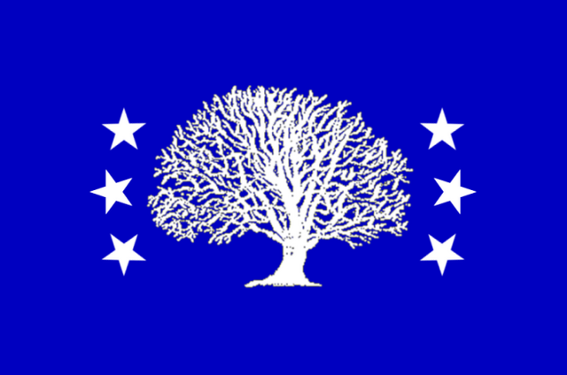 File:CT Flag Proposal ironchefshark.png