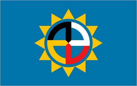 File:SD Proposed Flag Flaglog.png