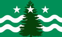 Evergreen Flag 1