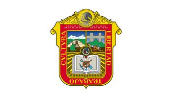 De facto flag of the State of México.