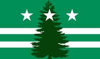 Evergreen Flag 2