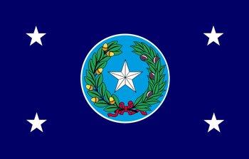 Standard of the Governor of Texas