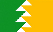 OR Flag Proposal Douglas Lynch