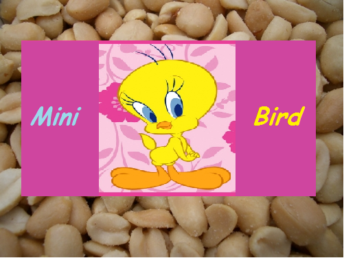 File:MiniBird.png