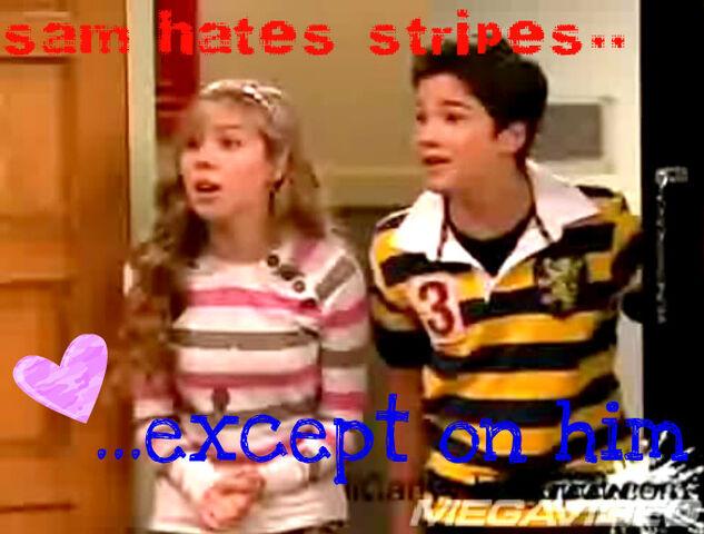 File:Sam hates stripes...jpg